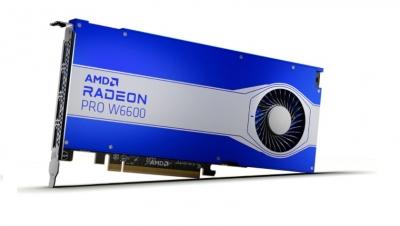 VGA AMD Radeon PRO W6600 8GB GDDR6 PCI (simil Quadro)